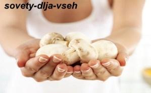 грибы при грудном вскармливании за