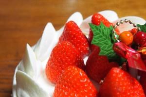 クリスマス葉っぱの名前トゲトゲケーキ