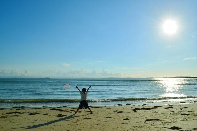 夏休みの自由研究に海で小学生ができるもの