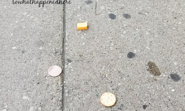 Obtuse Lunchables