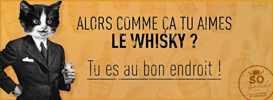 Dégustation de Whisky – Cave Dégusta St Jean d'Illac
