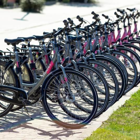 rowery kudowa
