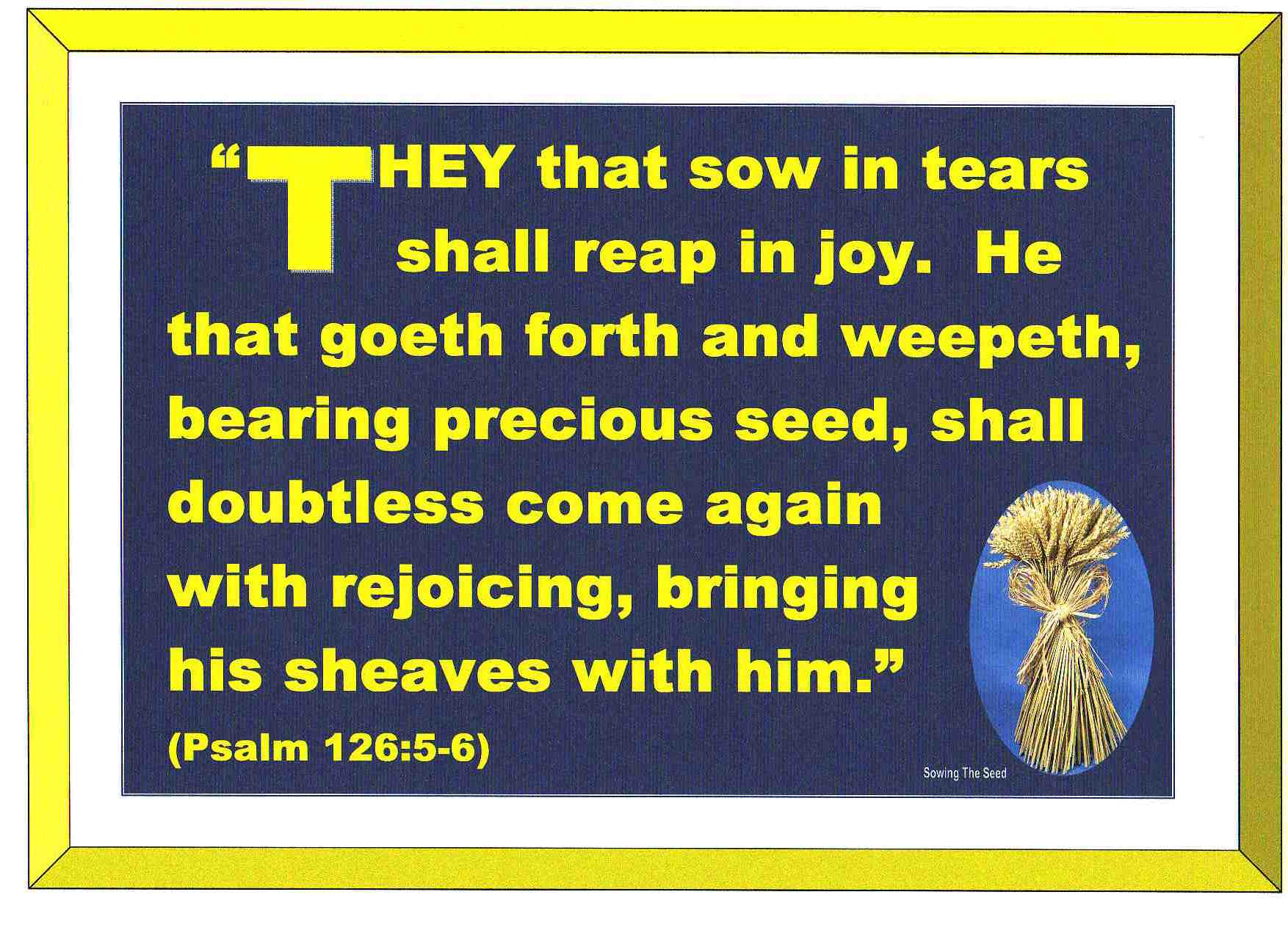 They That Sow In Tears