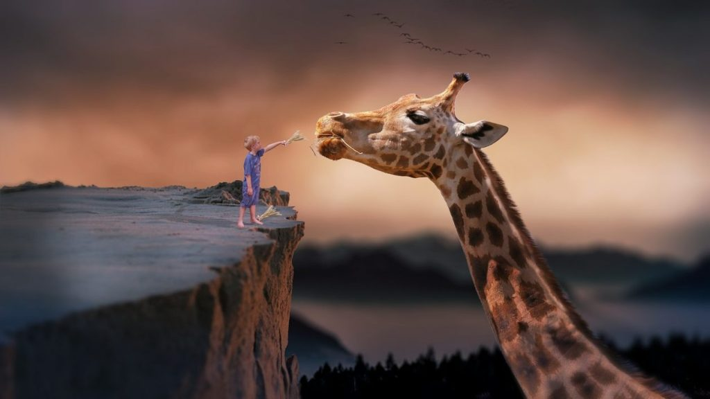 If your dreams don't scare you they aren't big enough!