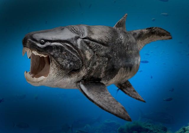 海の古代生物【画像】巨大すぎ! | 生き物係 -ikimono kakari-