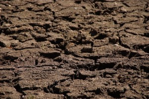 drought-578192_1920