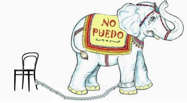 [Imagen: elefante.jpg]