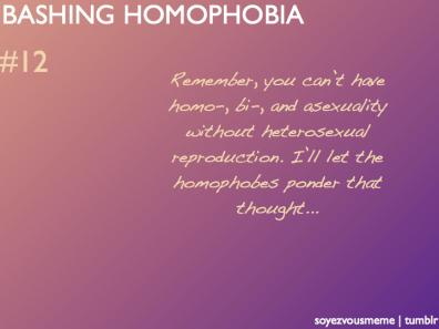Bashing Homophobia 12