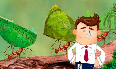 Sin dinero por la cuarentena Estos son los gastos hormiga que mas le pegan a tu economia