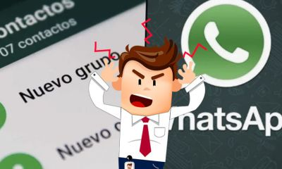 Adios grupos molestos de trabajo en WhatsApp la aplicacion se actualiza