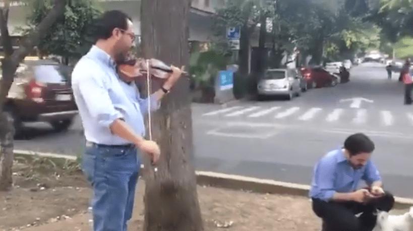 Un violinista calmando a la gente durante el #Sismo