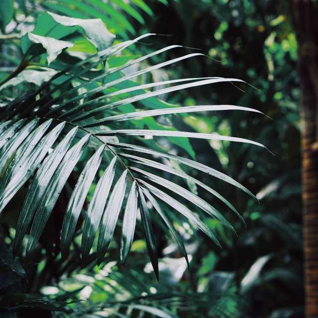 naturephotography naturephoto whatchthisinstagood artofvisualshellip