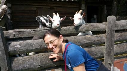 Samke Karen Goats