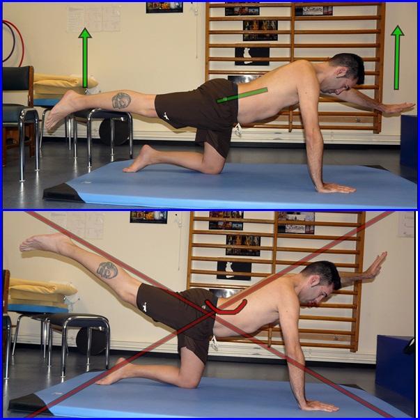 Fortalecer los abdominales: ejercicios globales de la faja abdominal (3/6)
