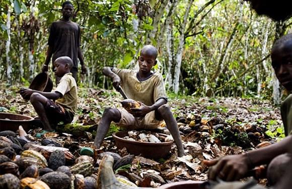 Los cultivadores de cacao que nunca habían probado el chocolate