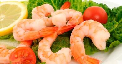 Impedirá EC a México exportación de camarón