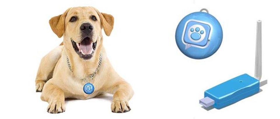 1548771-wanted-mattels-puppy-tweets-collar-rotator