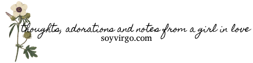 soyvirgo.com header image blog signature