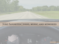 june monthly favorites soyvirgo.com blog post cover driving