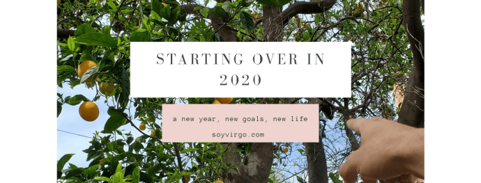 2020 life updates, starting over, turning a new leaf, blogger comeback spirit guides law of attraction