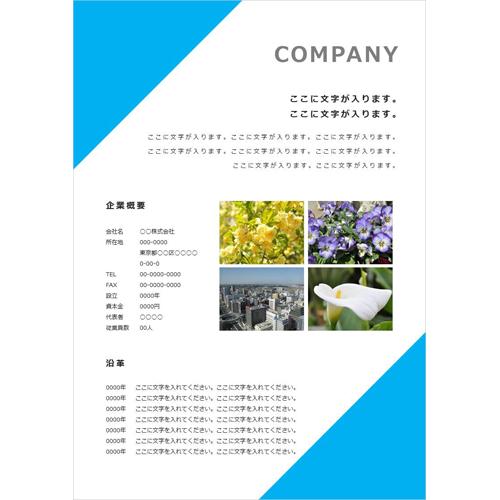会社案内・パンフレット(シンプル・水色・A4)