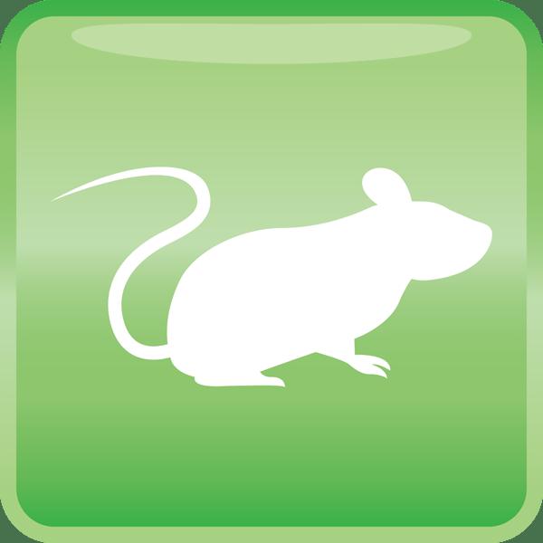 医療 ネズミアイコン(カラー)