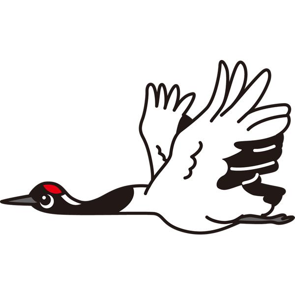 bird_13