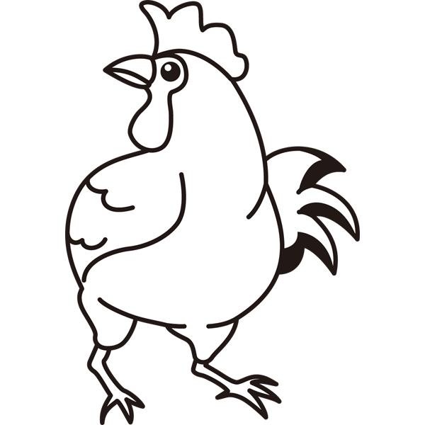bird_20