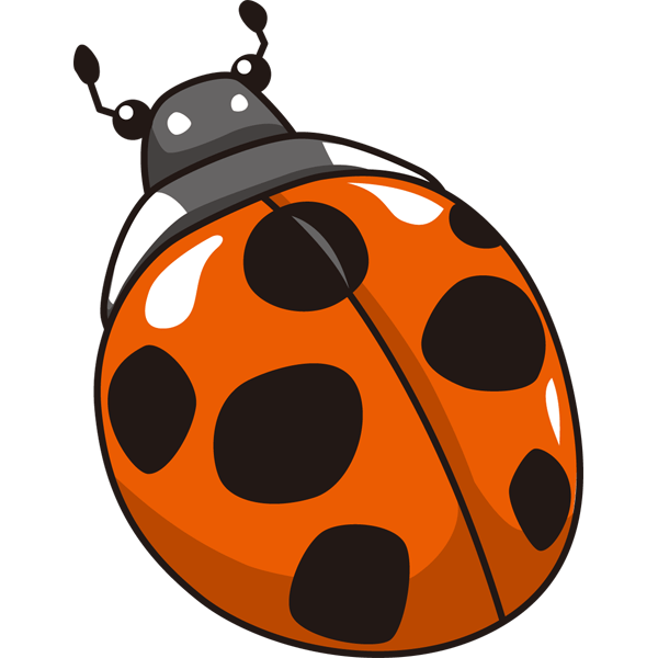 insect_11