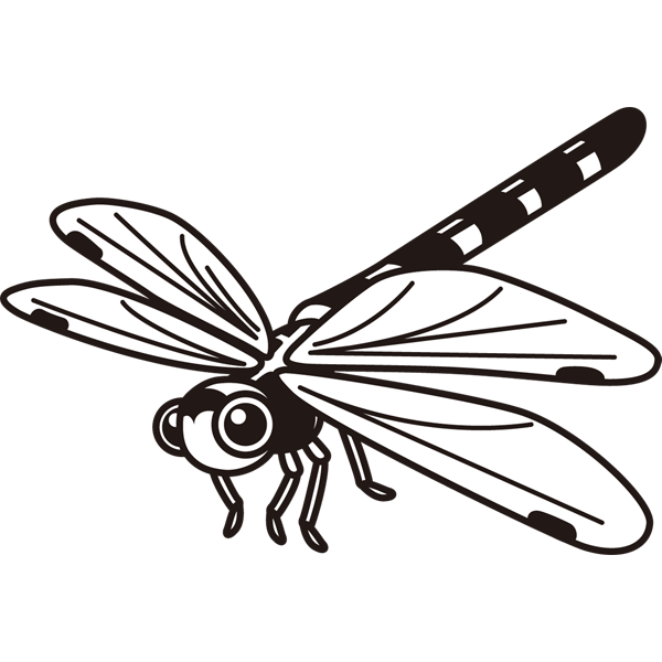 insect_18