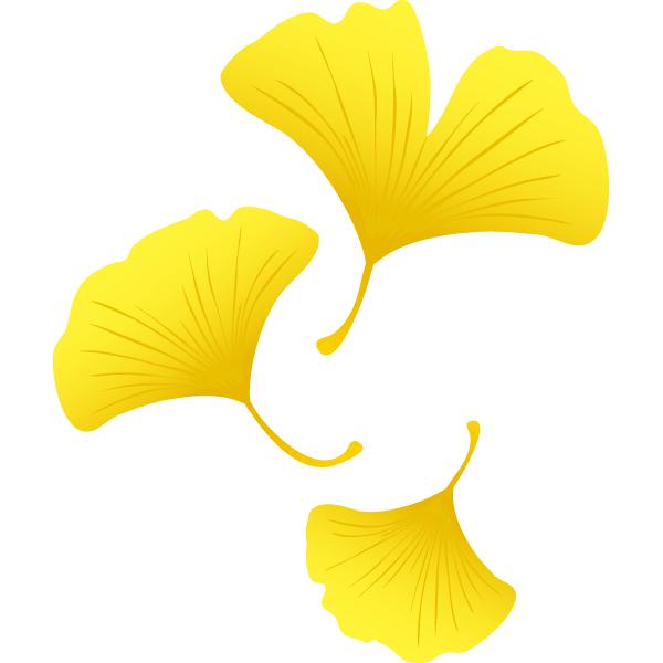 イチョウの葉っぱ複数 無料イラストpowerpointテンプレート配布