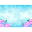 背景画像 雨とあじさい