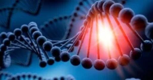 Cientistas descobrem uma tribo com DNA alienígena