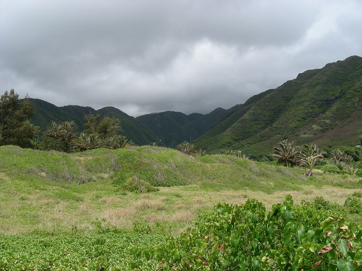 Darkening Halawa Valley by Kristina D.C. Hoeppner
