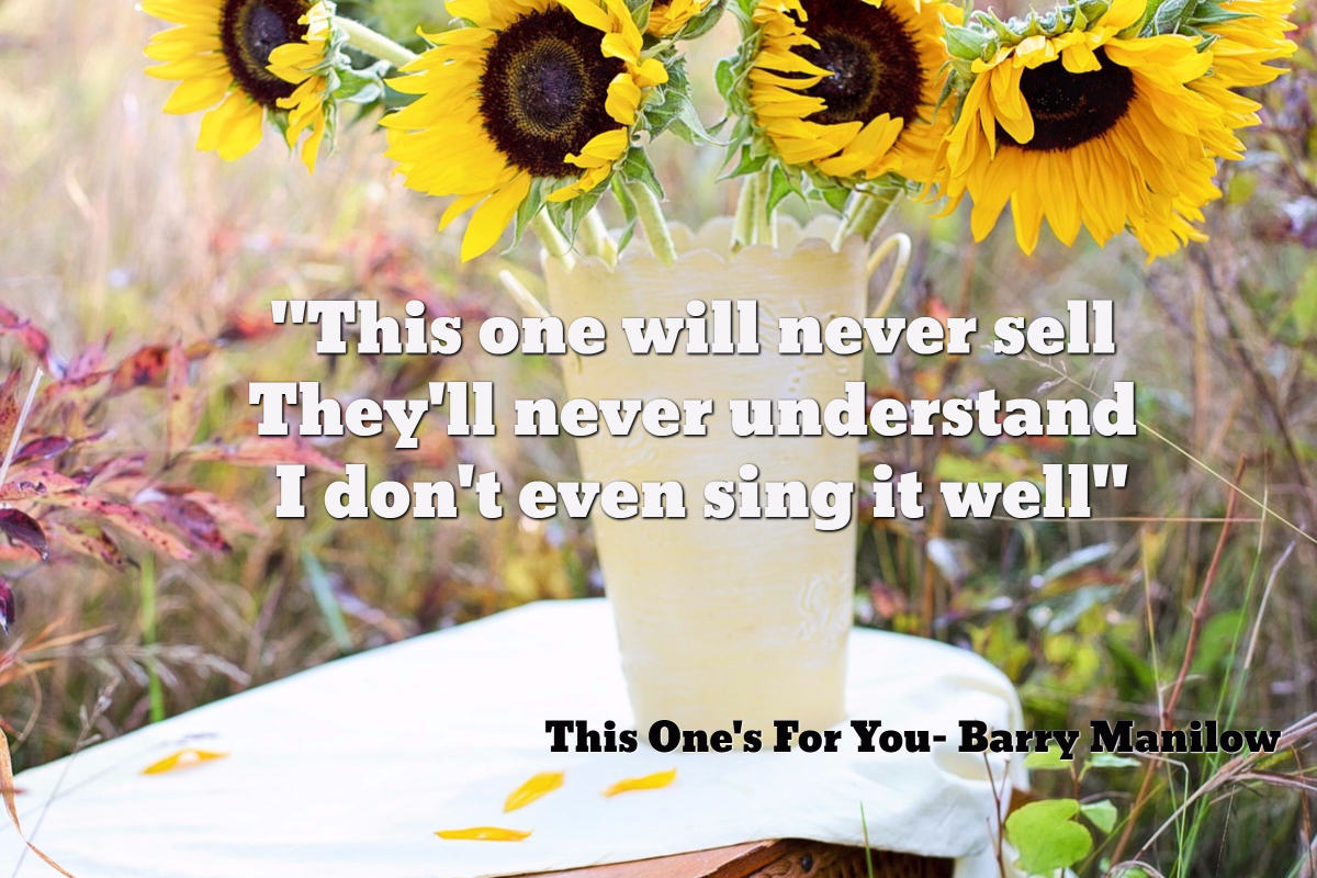 this-ones-for-you