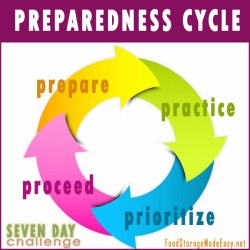 preparedness_cycle