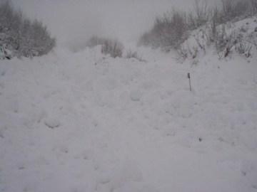 Granite Mountain avalanche debris field, ski pole was a clue.  Photo: Seattle Mountain Rescue Facebook page