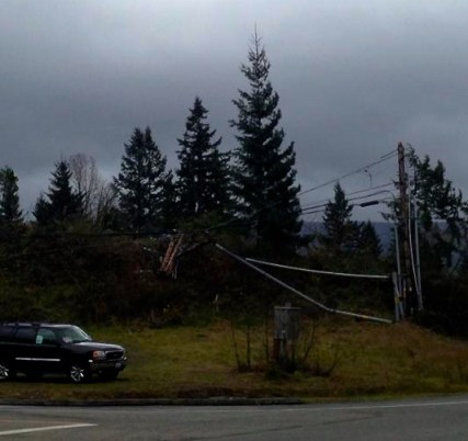 Power pole and lines down at corner of of SE 96th Ave and Snoqualmie Parkway, 11/2/13.