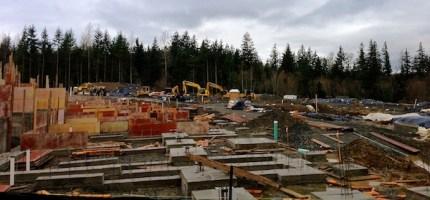 woodlandsconstruction