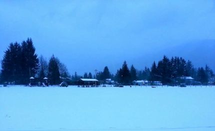 Early morning snow at Si View Park in North Bend, 2/10/14.  Photo: Ashley Johnson