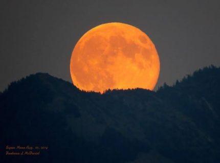 barb super moon