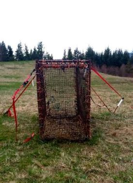 Elk trap on 12th hole of  TPC Snoqualmie Ridge Golf Course, 2/20/15