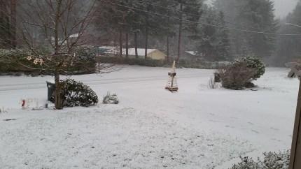 Snow in Wilderness Rim near North Bend, 12/17/15. Photo: Kathy Hyland