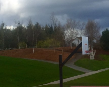 DOC crews revitalized hillside at Snoqualmie Community Park.