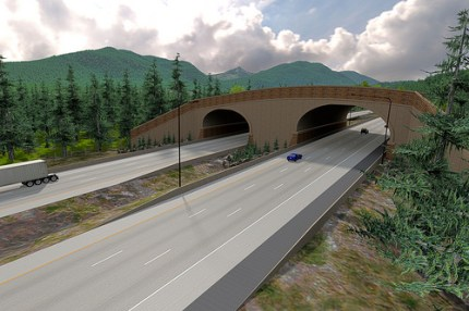 A design visualization of the completed Keechelus Lake Wildlife Overcrossing. Source: WSDOT