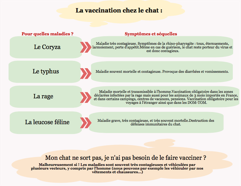 vaccination chat