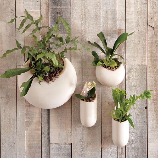 shane-powers-ceramic-wall-planters-o