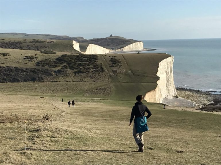 The brown-green Seven Sisters cliff downs roll up and down while the gray-blue sea water appears still in the distance.
