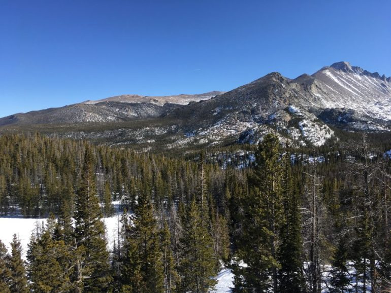 Tall pine trees in the foreground and mountain peaks dotted with snow in the distance.
