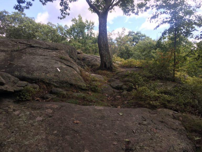 smooth large rocks